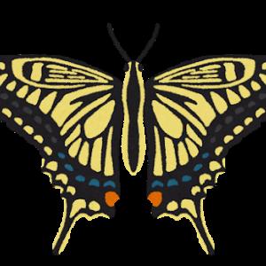ポルノグラフィティの聞くべき曲No.1アゲハ蝶