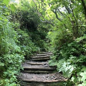 天国への一本道を歩く🏔