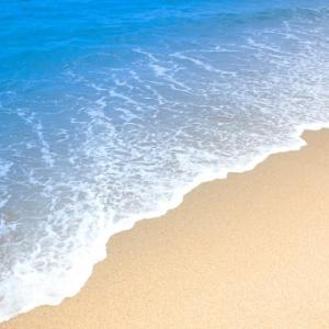 海の日にハワイを。グランドニッコーホテル台場のハワイフェアに行ってきました。