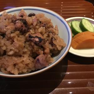 日本料理❤︎有栖川(前半)❤︎染井吉野とサクジロー❤︎誕生花(蝋梅)❤︎オトナの弁当