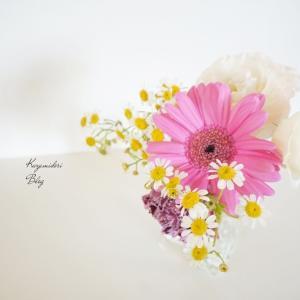 お花の定期便BloomeeLIFE(ブルーミーライフ)試して分かったメリット・デメリット