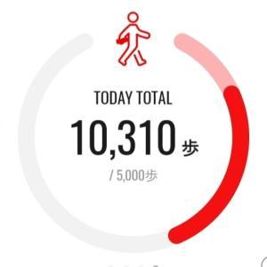 日常生活で歩く!久々の出社日に頑張った結果は?!