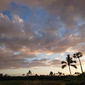 親子3代、家族で行くハワイ島旅行|ハワイ島を選んだ理由!!!