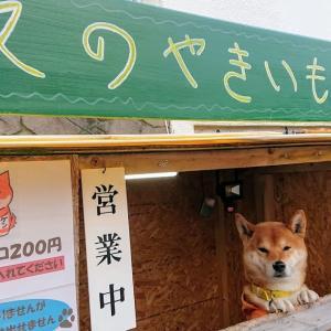札幌・小樽散策、シャトレーゼガトーキングダムサッポロ②