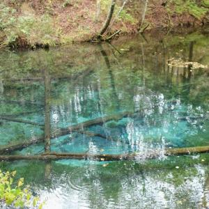 北海道・道東5日間④ アイヌと船でしか行けない神社や神の子池とか