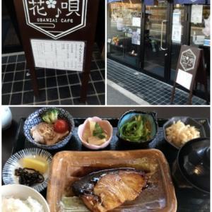 タンちゃんと夙川散策②