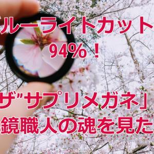 【WEB限定】カット率90%以上!究極のブルーライトメガネ!サングラスではありませんよ!