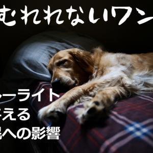 減り続ける日本人の睡眠時間へ警告!ブルーライト問題の関係性