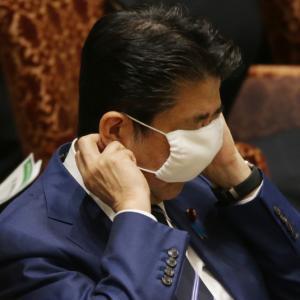 """1世帯2枚の""""アベノマスク"""" コロナ予防にも疑問符で大炎上"""