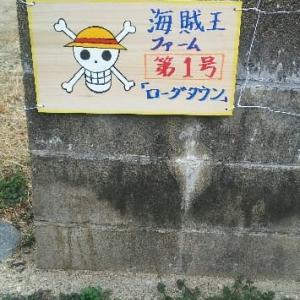 海賊王喫茶店の場所探しー15