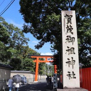 賀茂川(14)下鴨神社・糺の森