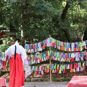 賀茂川(15)下鴨神社