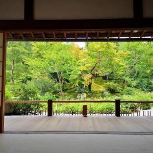 嵐山(16)小方丈のお座敷
