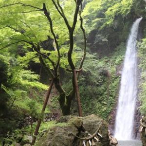 西濃(2)養老の滝