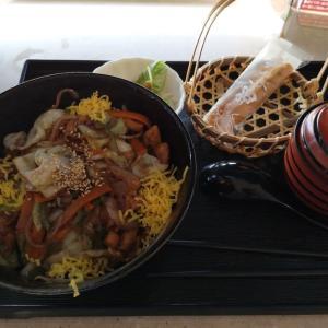 岐阜(3)展望レストラン:道三けいちゃん丼