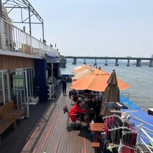 ジャスミン漢江に放たれる