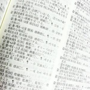辞書に載っていない韓国語