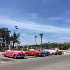ハバナのコスパ抜群の観光客向けレストランと、ハバナの旧市街をお散歩♡♡♡