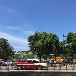 引き続き、可愛いハバナ旧市街をお散歩!!!&今日もお酒です。笑