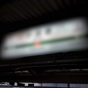 【完結】世界一周と帰国後の西日本旅!!静岡県から神奈川県!1年8ヶ月ぶりの実家!ついにゴール!!