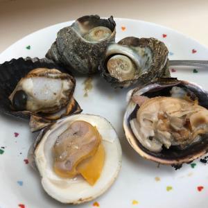 「水沼さざえ店」(三重県鳥羽市) 名物の大あさりなどを楽しめる貝焼きの人気店!