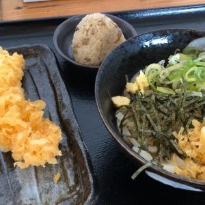 「とんがらし」(大阪府堺市南区) 『吉野鶏めし』も食べられる、唐辛子屋直営の人気うどん店!