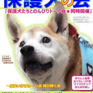 明日は保護犬の会です