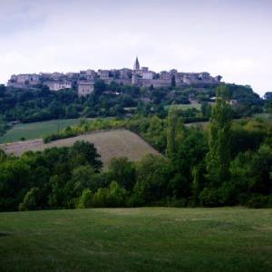南フランス田舎紀行(15)岩山のうえに家々ははりついているピュイセルシ Puycelci