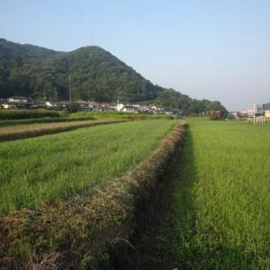 農地法3条について