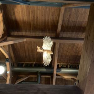 インフォメーションセンターの鳥達