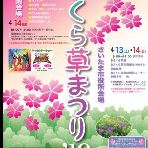 山野草盆栽イベント情報‼️今週末 さくら草祭inさいたま市