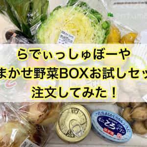 らでぃっしゅぼーやの「おまかせ野菜ボックスお試しセット」を注文してみた!