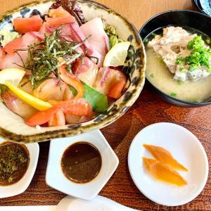 【宮崎県串間市】大乃屋で「串間活〆ぶりプリ丼ぶり」を食す!