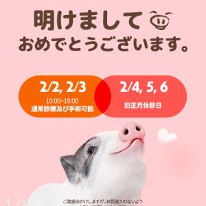 2019年旧正月休診日のお知らせ♡