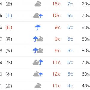 天気が⁉️梅雨みたい❗️
