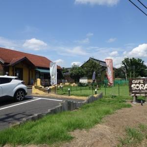 広いドッグランのある CAFE SORA