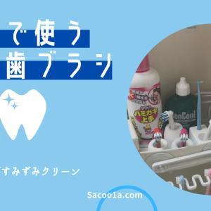 電動歯ブラシを家族で使う!区分と収納方法をご紹介
