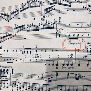ベートーベンの求めた響き-M氏の熱情を聴いて気づいた2つのsempre pedal-