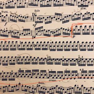 バッハは伝染する -バイオリンコンチェルト E-major BWV1042-