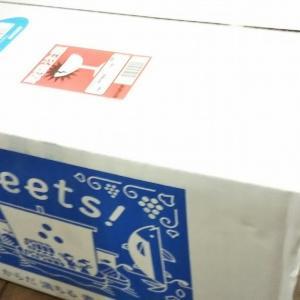 【ふるさと納税】長崎県松浦市から『旬のお野菜+産みたて濃厚玉子6個』の大満足セット!届きました!!