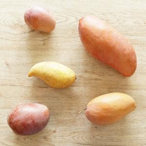タイの旬のフルーツ味わい尽くす