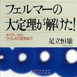 """フェルマーの最終決着""""その2""""〜フェルマーからオイラーに受け継がれた、代数的整数論の難解さと"""