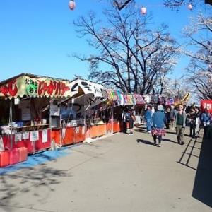 日本人にとってのお花見・・・(東北地方の花見の会)