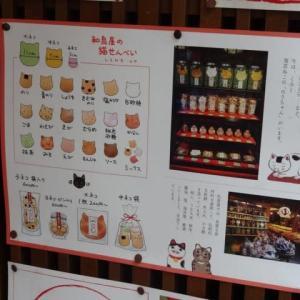 和泉屋の猫煎餅