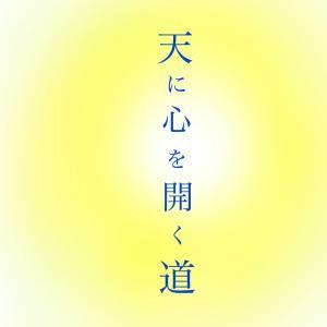 光の道へ 〜  パンデミックの意向 〜