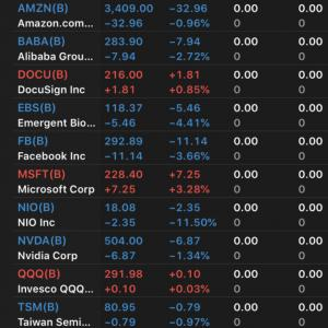 $FBを約100万円購入 $NIOが大きく下落 2020.8.28
