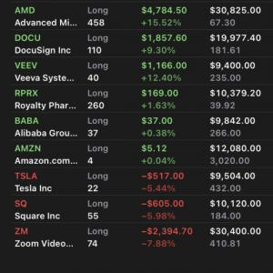 $ZM大幅下落続く $AMD、$BABAを100万円ずつ購入 2020.11.11