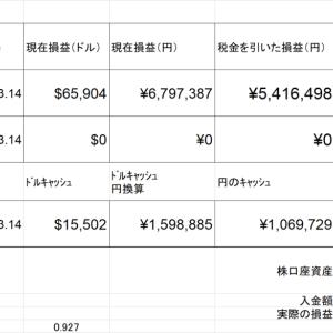 2020年は2822万円から3705万円の資産増加 (+31.2%) 2020.12.31