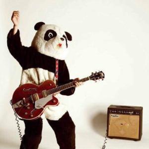 「恋愛重症」ギターパンダ&奇妙礼太郎 何回聞いても飽きない素敵な曲