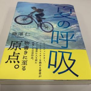 「夏の呼吸」藤澤仁(元ドラクエ10 ディレクター)を読んだ感想・レビュー